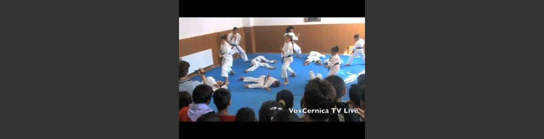 Spectacol Cernica 1 iunie 2011 Partea 1 Demo Karate Progresul Cernica